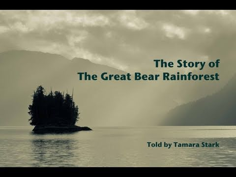 Tamara Stark's video of the Great Bear Rainforest Agreement